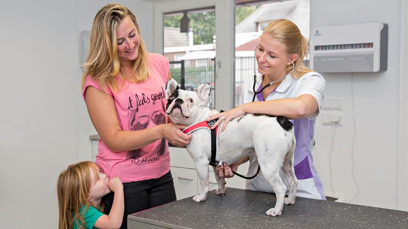 Pets Health dierenkliniek