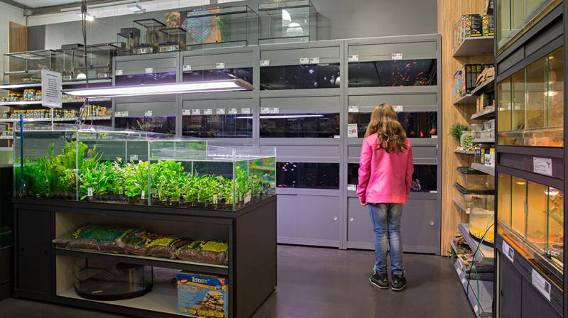 Design op onze aquariumafdeling